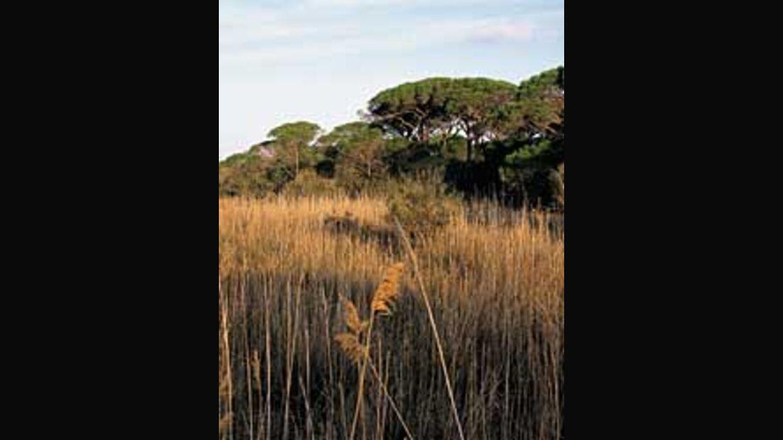 <i>outdoor</i>-Planer: Naturpark Maremma