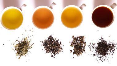AL-Illu-Tee-verschiedene-Fermentationsstufen-public-domain