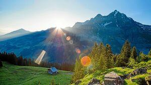 Adelboden: Bergpanorama mit Wald