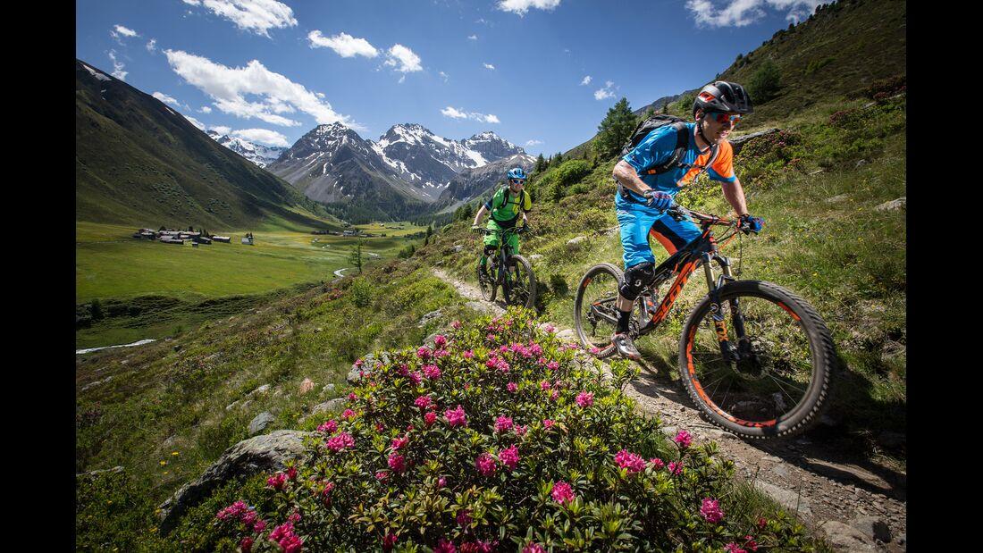 Alpenrosen-Trail, Graubünden, Schweiz