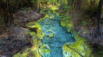 Aotearoa - Impressionen aus Neuseeland 5