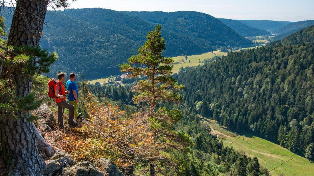 Auf dem Albsteig im Schwarzwald