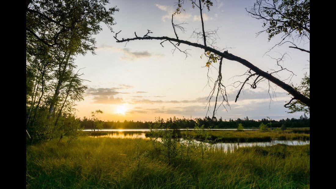 Bad Wildbad - Wildsee - Sonnenuntergang