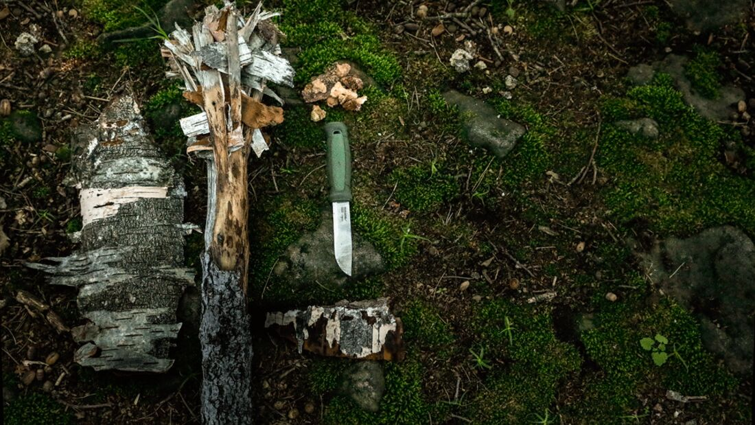 Basislager: Bushcraft - Fackel bauen