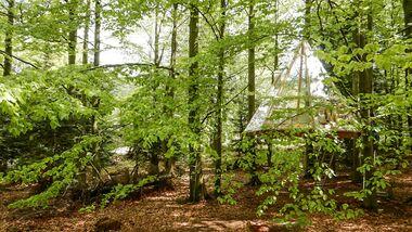 Baumhäuser Bad Herrenalb und Bad Teinach