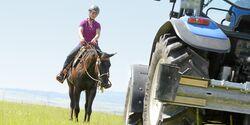 CAV Pferd und Traktor