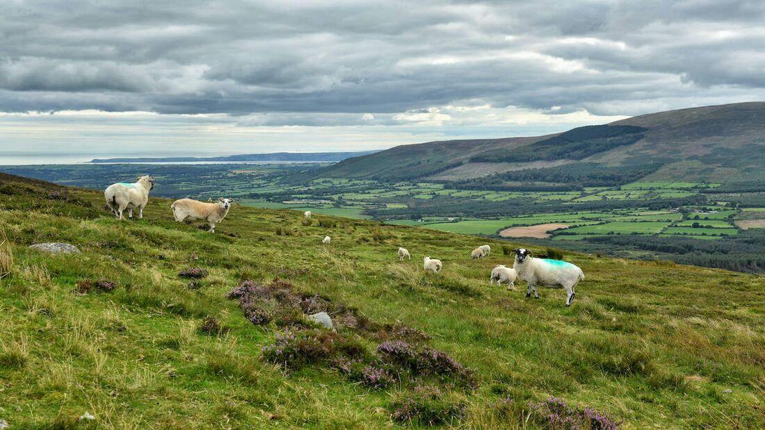 Irlands Süden