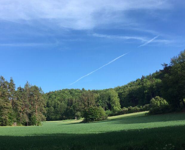 Frankenjura Landschaft