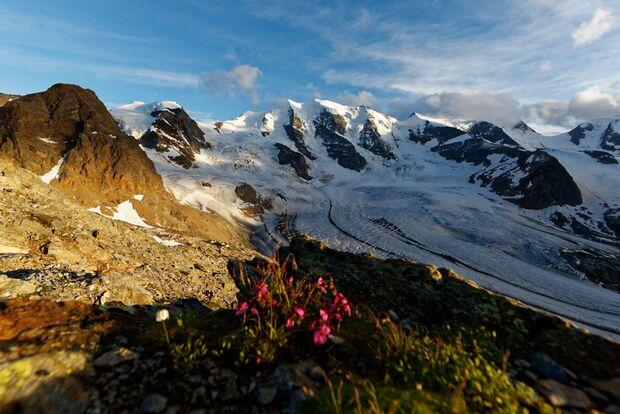 Get Vertical: Alpines Abenteuer in Pontresina 22