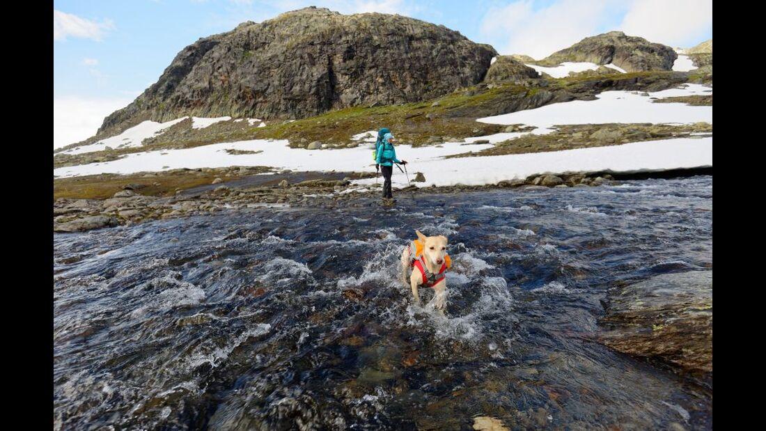 Hardangervidda: Paradies für Nordlandtrekker 21