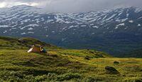 Hardangervidda: Paradies für Nordlandtrekker 48