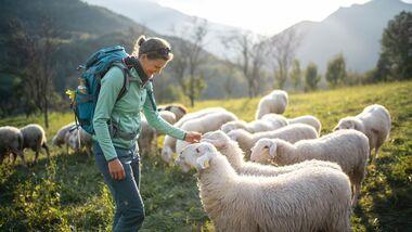 Heft 06/2021 Reisereportage Slowenien Juliana Trail