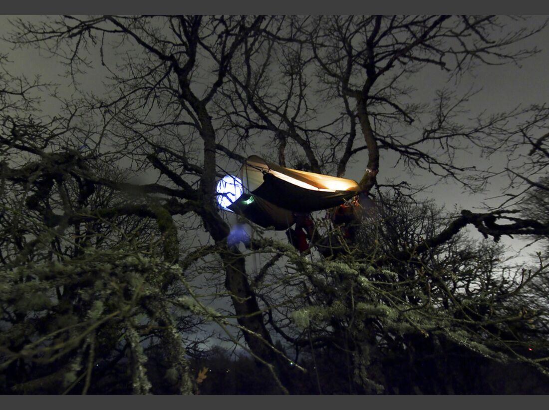 KL-BANFF-2012-Treeverse_1 (jpg)