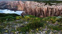 KL-Klettern-in-Portugal-Sagres-c-Ricardo-Alves-RA_Sagres26 (jpg)