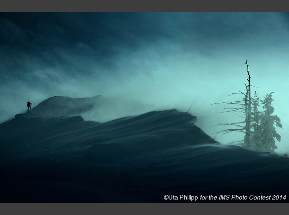 KL-OD-IMS-Photo-Contest-2014-24-Uta-Philipp-452 (jpg)