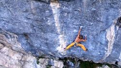 KL Pirmin Bertle Meiose 9b Video