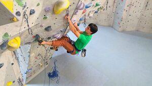 Klettern, Bouldern und Klettertraining