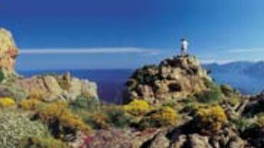 Korsika Aufmacher
