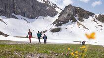 Marmot Family Camp 2019 im Kleinwalsertal