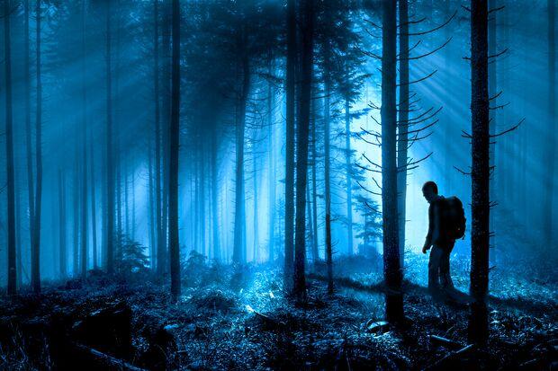 Nachtwanderung bei Vollmond im Wald