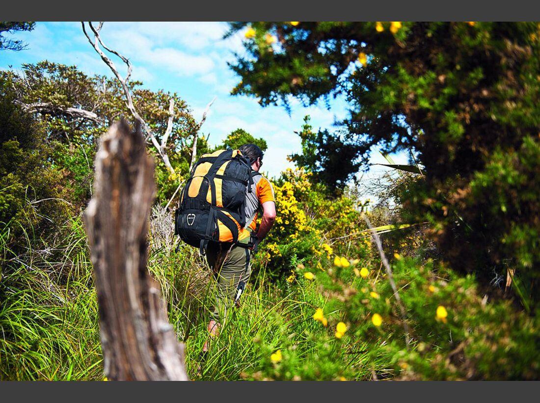 OD-0114-Neuseeland-Hillary-Trail-5 (jpg)