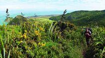 OD-0114-Neuseeland-Hillary-Trail-6 (jpg)