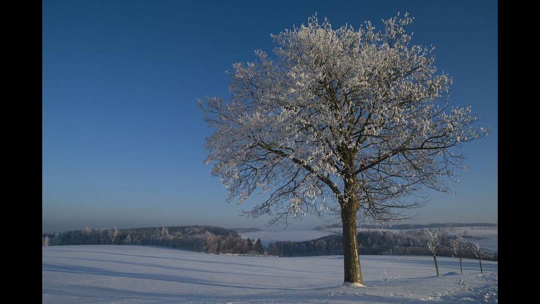 OD 0311_Winterbilder_Christina Wittlinger