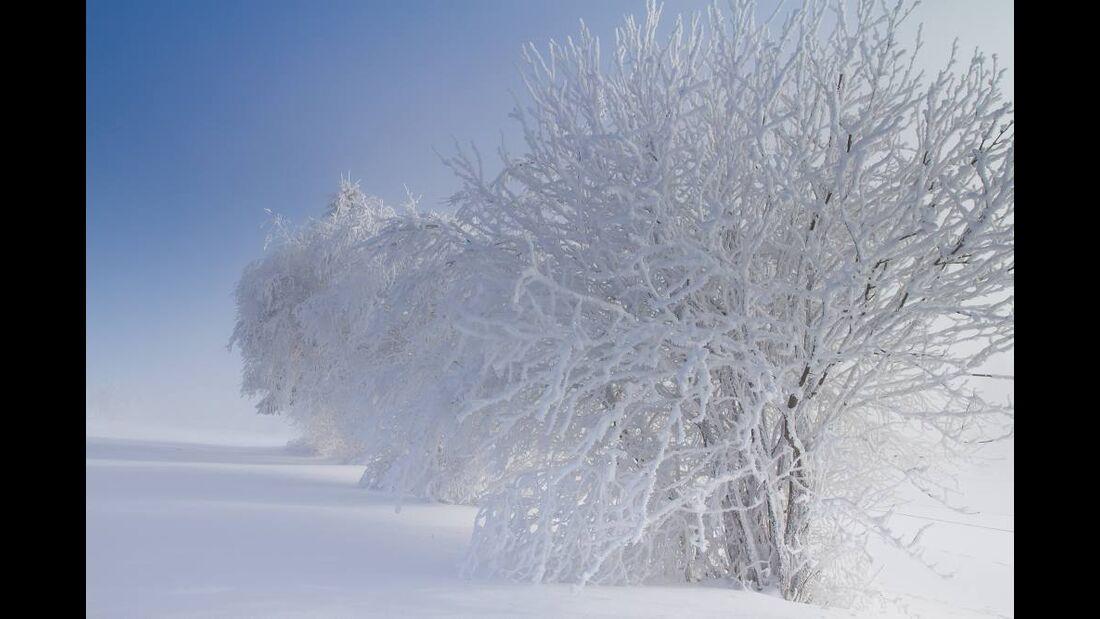 OD 0311_Winterbilder_Frederic Manzanares