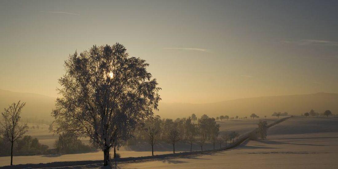 OD 0311_Winterbilder_Jürgen Mayer
