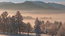 OD 0311_Winterbilder_Tanja Ghirardini