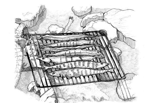 OD 0318 Know How Fisch am Feuer Grillen Illustration