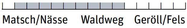 OD 0319 Wanderschuhe Einsatzbereich - Salewa Speed Beat GTX