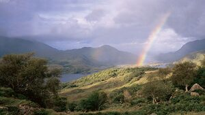 OD 0511 Irland Kerry Way Wandern 4
