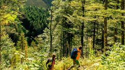 OD 0516 Schwarzwald Tour Menzelschwand