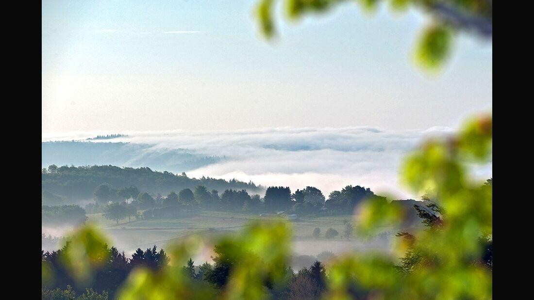 OD 0518 Eifel Rund um Imgenbroich