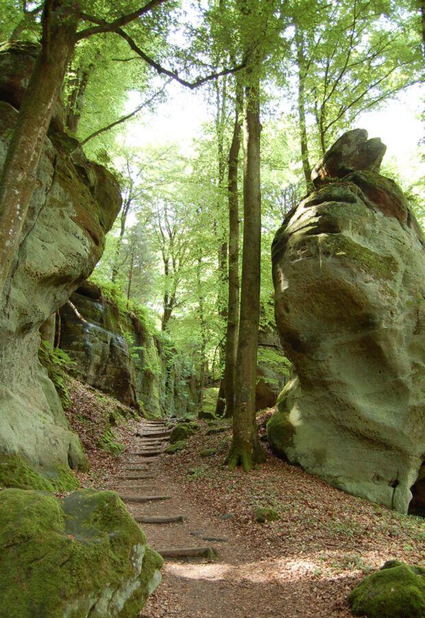 OD 0611 Trail und Touren Ann16_Luxemburgische_Schweiz_Labyrinth_im_Muellertal (jpg)