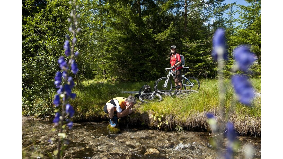 OD 0612 Alpencross MTB MS_BEN8746 (jpg)