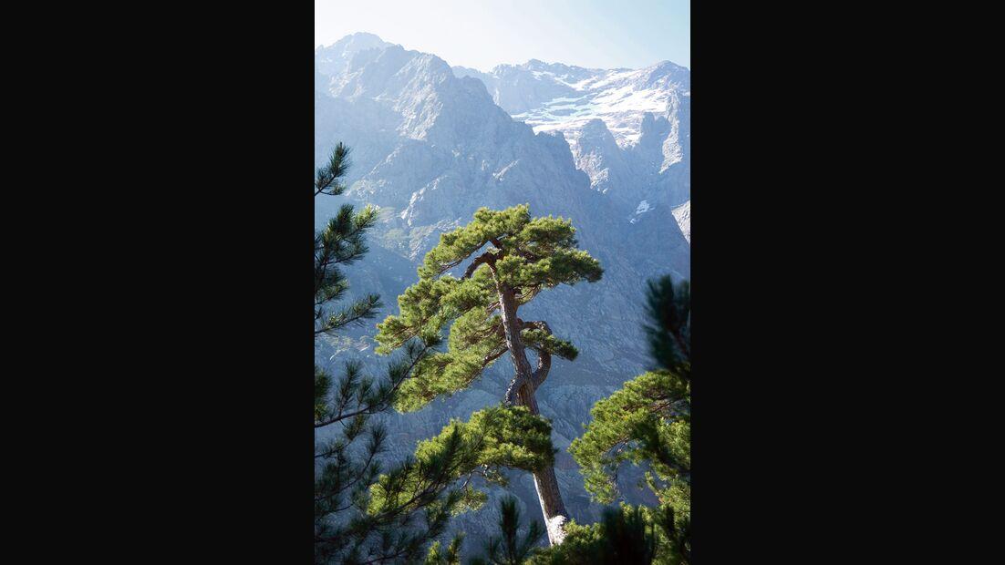 OD 0809 Korsika Spotguide