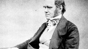 OD 0811 Charles Darwin Abenteurer
