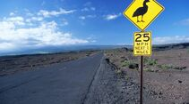 OD-0912-Hawaii--hawaii0074_l (jpg)