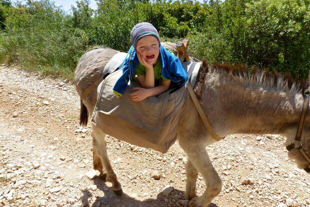 OD 0916 Leserreportage Frankreich Eseltrekking Kind