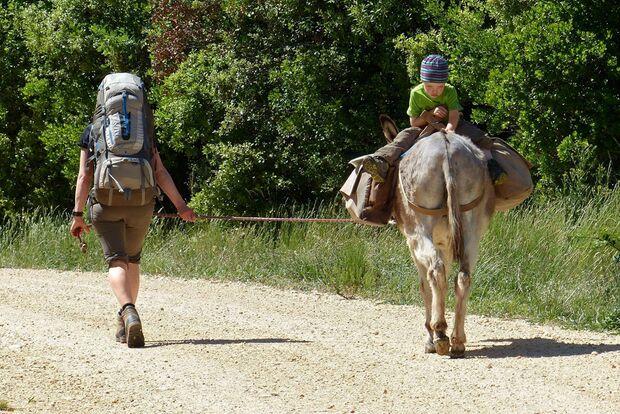 OD 0916 Leserreportage Frankreich Eseltrekking