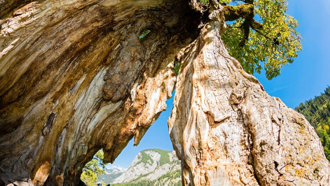 OD 0917 Karwendel Österreich Faule Eng und Gramaijoch
