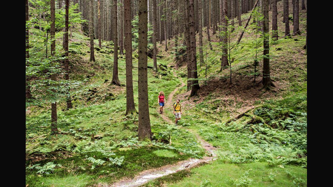 OD 0918 Reise Böhmische Schweiz Hrensko Tschechien Tour 3 Schneeberg