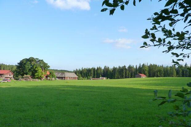 OD_1011_Naturzeltplatz_snaret2 (jpg)