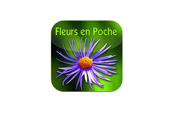 OD-1012-Apps-Blumen (jpg)