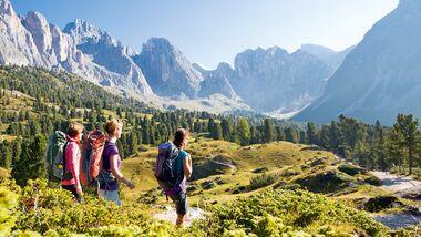 OD 1115 Woman Südtirol Dolomiten Cisles Alm Grödental Val Gardena