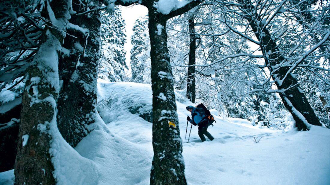 OD 1210 Schwarzwald Schneeschuhtour_BEN2486 (jpg)