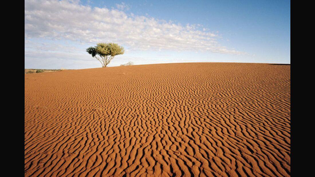 OD 2011 Australien Flinders Range (jpg)