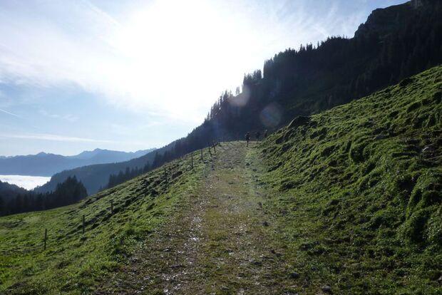 OD 2011 Ultratrail Allgaeu Auf-grandioser-Strecke-durch-die-Allgaeuer-Alpen (jpg)